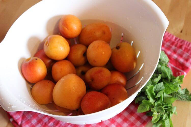 Aprikosen-Minz-Marmelade mit Johannisbeeren und frischer Minze