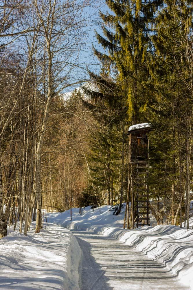Winterwanderweg Pertisau