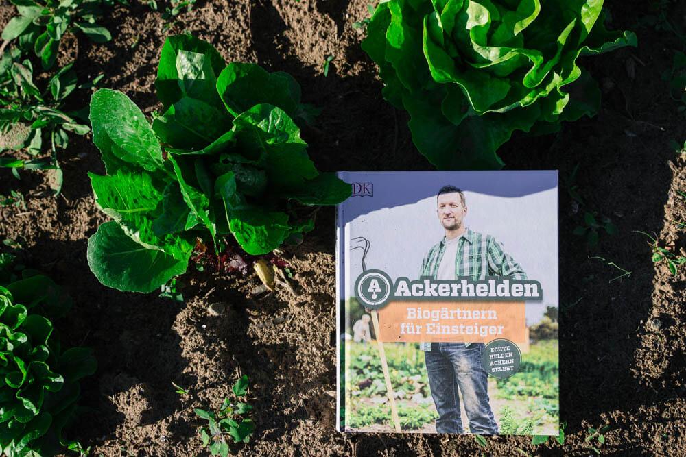 Saisongarten Tipps - egal ob Tegut Ackerhelden oder Meine Ernte