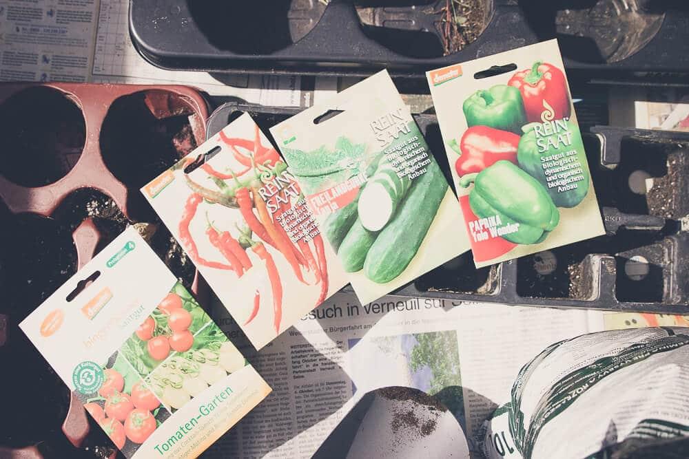 Pflanzen vorziehen: So bereite ich mich auf die Saisongarten-Zeit vor